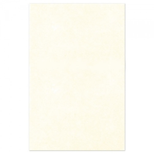 Rectangle de feutrine 3 mm 30x45 cm Crème x1