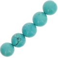 Turquoise imitation rondes 10 mm x5