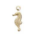 Breloque fine estampée Hippocampe 13x5 mm en Gold filled 14 carats x1