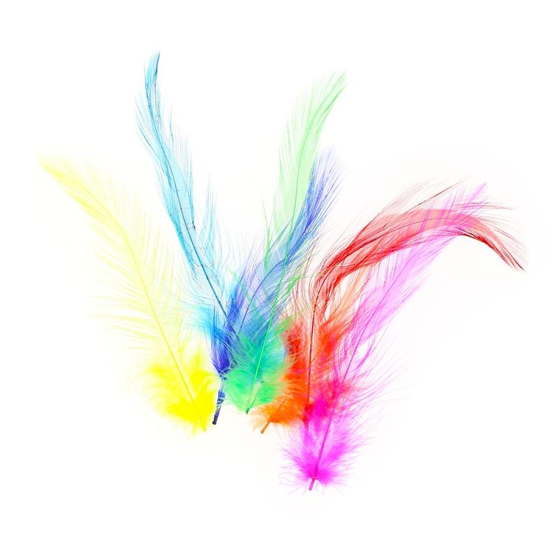 assortiment de plumes de coq collet 3 15 cm multicolore x5g perles co. Black Bedroom Furniture Sets. Home Design Ideas
