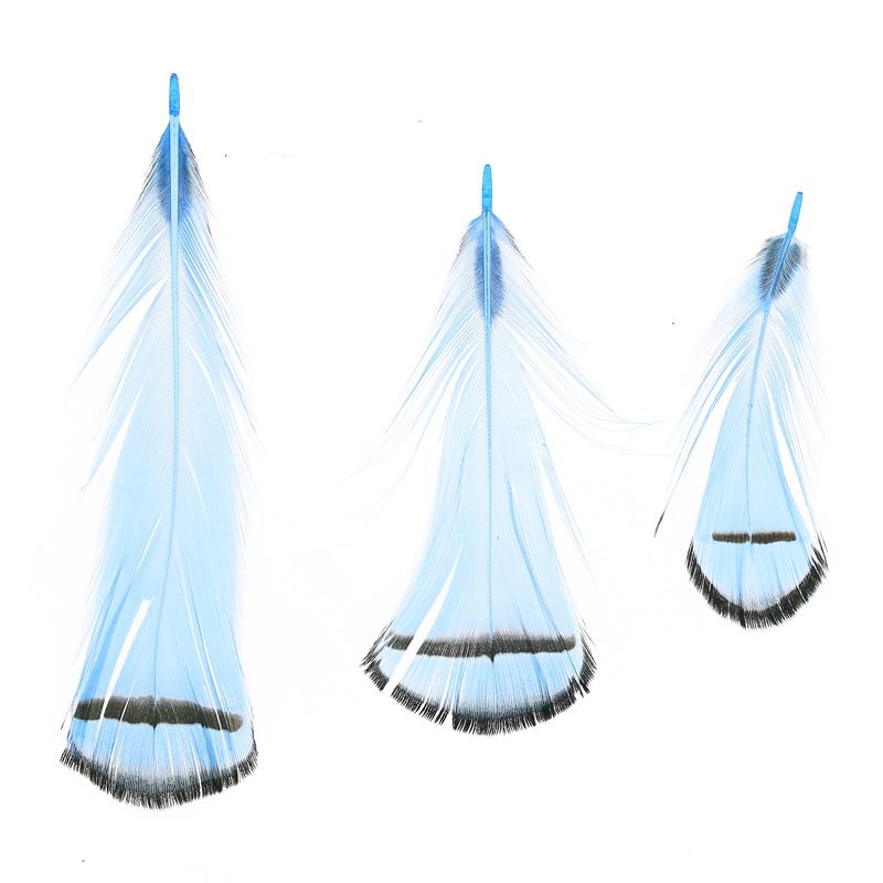 plume de faisan ray e 6 11 cm bleu x1 perles co. Black Bedroom Furniture Sets. Home Design Ideas