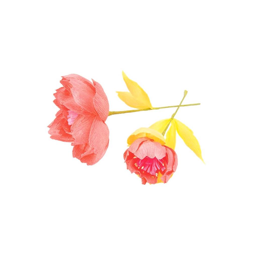 Cr pon fleuriste pour fleurs en papier 25 cm orange x for Fleuriste fleurs