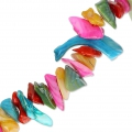 Eclats de coquillages nacre 16-7 mm multicolore x 35 cm