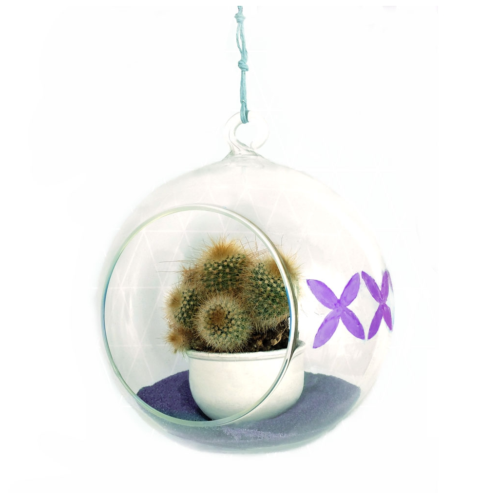 mini bocal terrarium diy d co pour plantes en verre boule ouver perles co. Black Bedroom Furniture Sets. Home Design Ideas