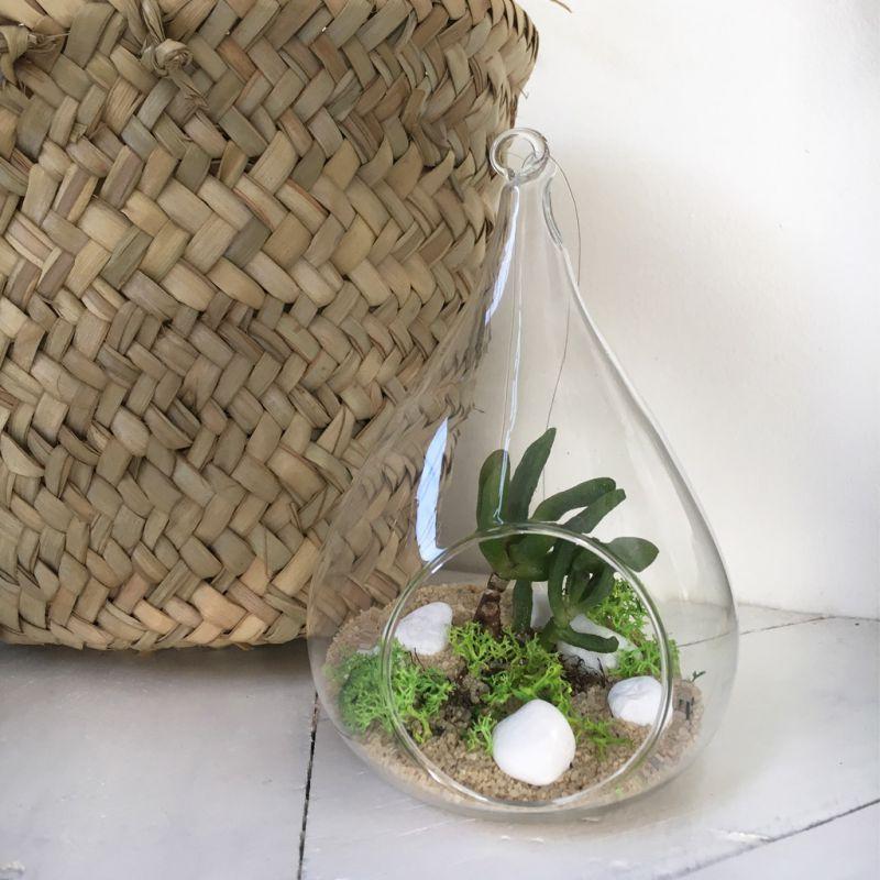 terrarium boule verre