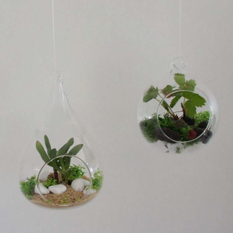 mini bocal terrarium diy d co pour plantes en verre ampoule ouve perles co. Black Bedroom Furniture Sets. Home Design Ideas