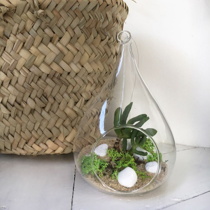 mini bocal terrarium diy d co pour plantes en verre vase ampoule perles co. Black Bedroom Furniture Sets. Home Design Ideas