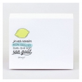 Bloc-notes Mr. Wonderful 9.5x12 cm Wonder-Résolutions x1