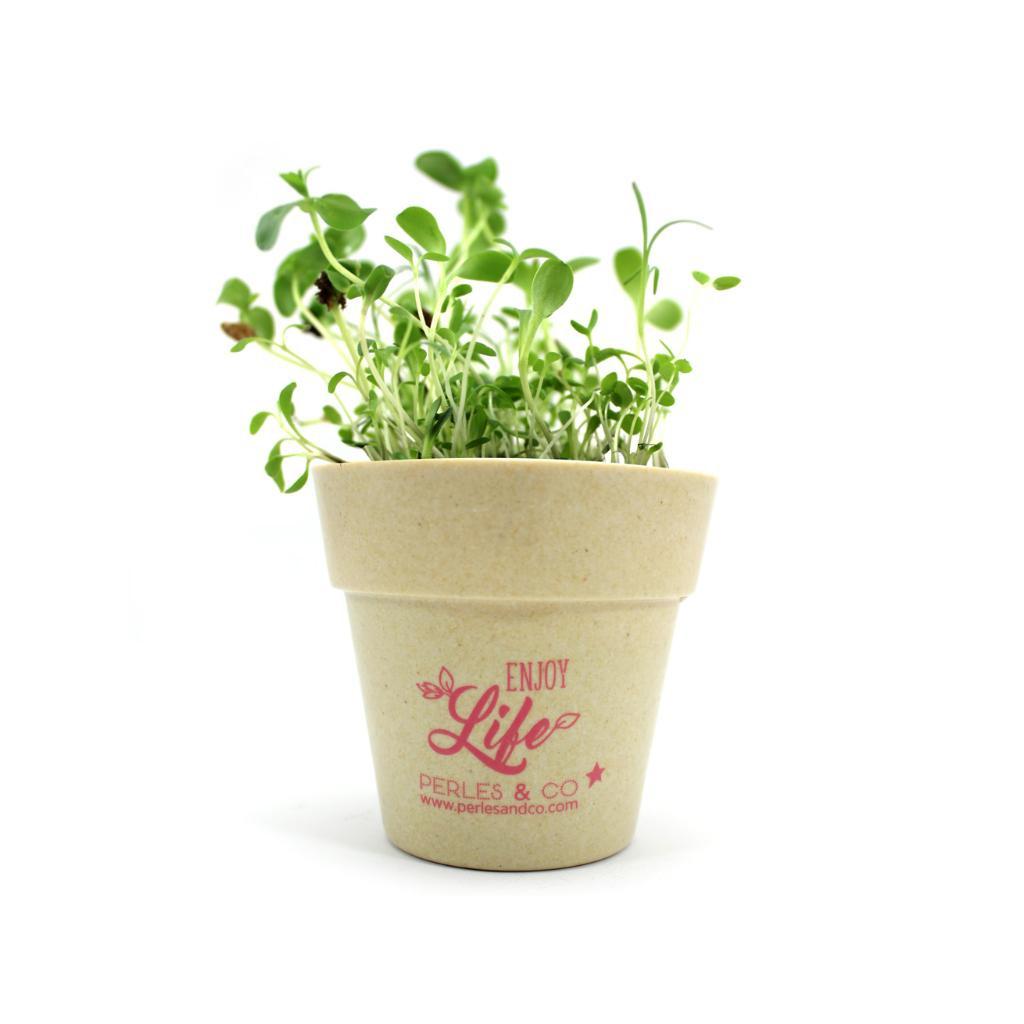 cadeau kit de plantation dans pot en bambou biod 233 gradable tendan perles co